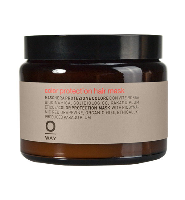 Color Protection hair Mask 500